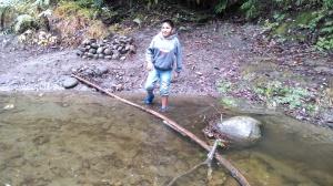 nisene_141206_georges_wading