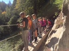 Bridge at Big Slide
