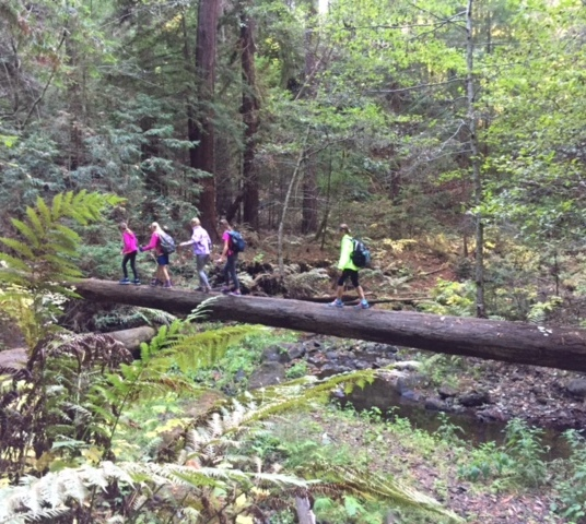 Crossing Aptos Creek on a fallen redwood tree